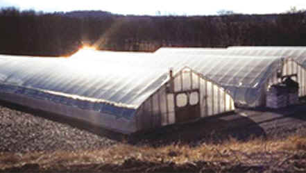 inflation buster greenhouse